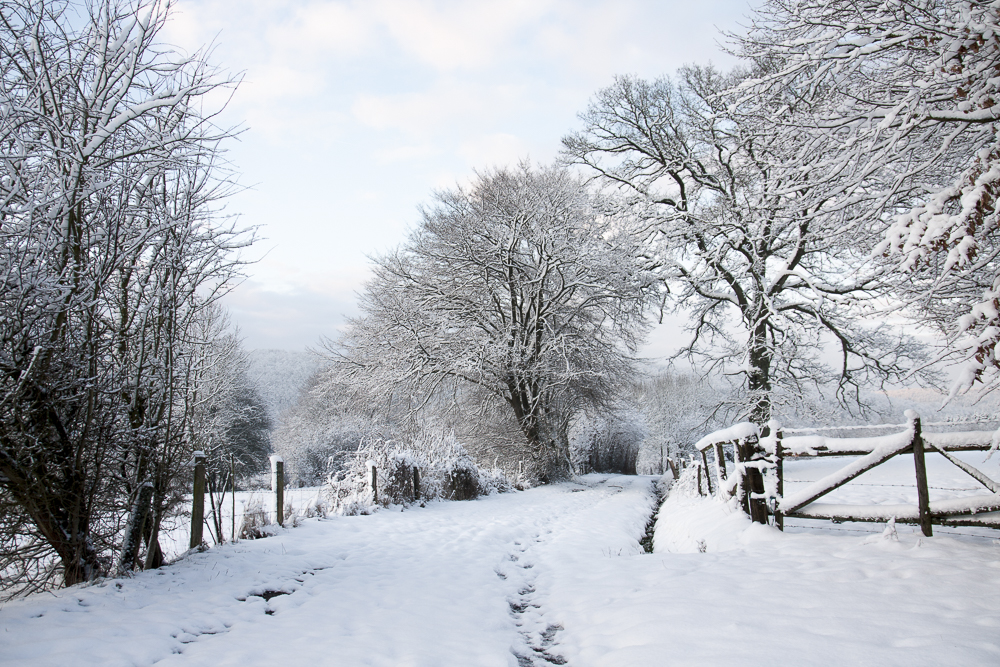 2013-02-neige-Hoursinne_019
